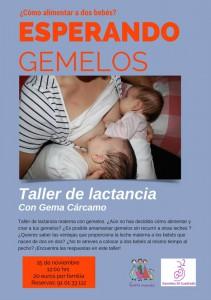 taller de lactancia materna con gemelos