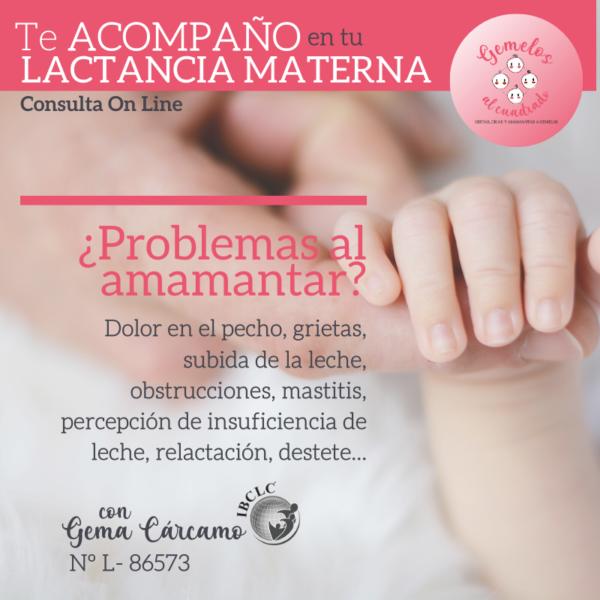 consulta de lactancia materna on line